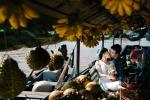 Những địa điểm chụp hình cưới nổi tiếng ở Cần Thơ