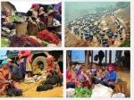 Chợ Cán Cầu - Chợ trâu nơi mua bán hấp dẫn của vùng cao Lào Cai