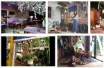 Những homestay tuyệt đẹp cho khách du lịch bụi ở Đà Lạt