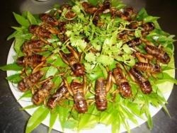 7 món dân dã làm nên đặc sản ẩm thực Đồng Nai