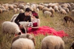 Địa điểm chụp ảnh cưới đẹp ngây ngất ở Ninh Thuận