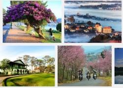 Khách sạn Đà Lạt 2 sao những điểm chọn lý tưởng cho dân du lịch
