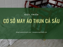 Địa điểm may gia công uy tín - Cơ sở may áo thun cá sấu TPHCM