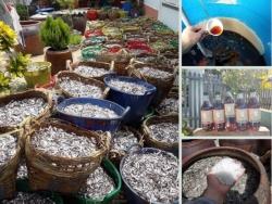 Địa điểm nhanh bật mí Nhà cung cấp nước mắm Phan Rang giá sỉ TPHCM