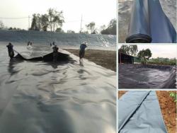 Địa điểm nhanh giới thiệu nơi bán màng chống thấm HDPE Solmax Thái Lan, Sunco Việt Nam