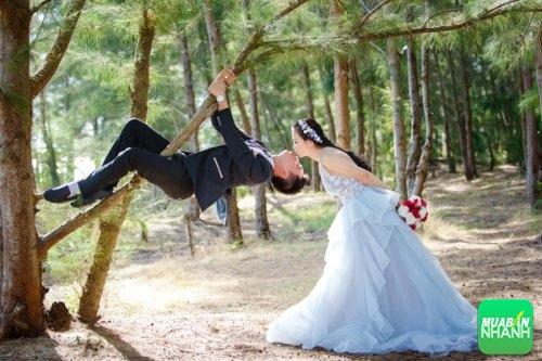 3 Studio chụp ảnh cưới nổi tiếng ở Bến Tre, 296, Phương Mai, Địa Điểm Nhanh, 17/10/2016 15:05:52