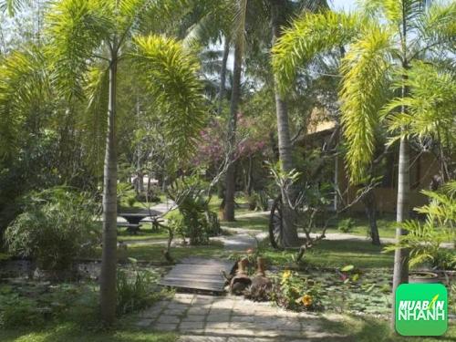 Những địa điểm Homestay ở Phan Thiết không thể bỏ qua, tìm đến homestay đẹp, hấp dẫn, độc đáo khi đi Homestay ở Phan Thiết, 136, Như Nguyệt, Địa Điểm Nhanh, 29/08/2016 13:57:47