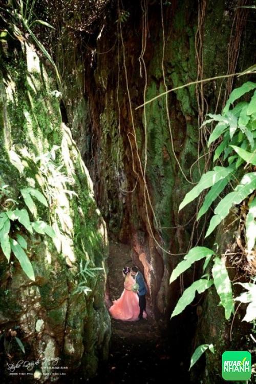 Chụp ảnh cưới tại khu thác Bảo Đại - Đức Trọng - Lâm Đồng