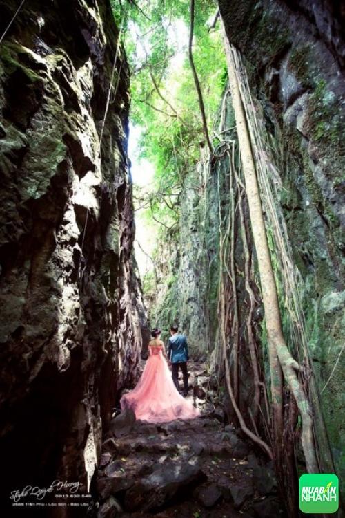 Khu vực thác Bảo Đại với cây cối hoang sơ - phông nền ảnh cưới chất