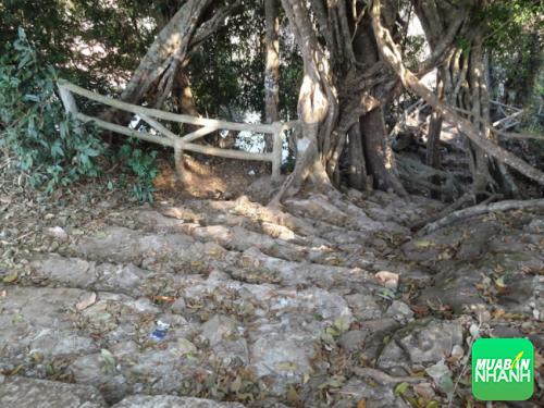 Đường xuống thác Bảo Đại