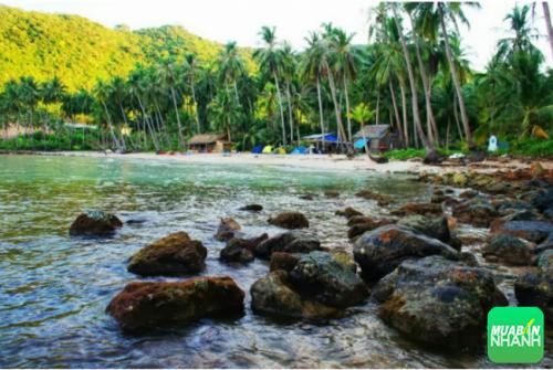 Hòn Mấu mang đầy vẻ đẹp tiềm ẩn và hoang sơ, thích hợp cho những dân du lịch bụi đi khám phá