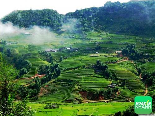 Các địa điểm du lịch Sơn La - Nơi ngắm nhìn trọn vẹn cảnh sắc thiên nhiên vùng Tây Bắc, 212, Phương Mai, Địa Điểm Nhanh, 31/08/2016 16:30:48
