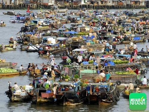 Du lịch Tiền Giang với những địa điểm sở hữu phong cảnh hữu tình khó có thể quên, 217, Phương Mai, Địa Điểm Nhanh, 01/09/2016 09:56:36