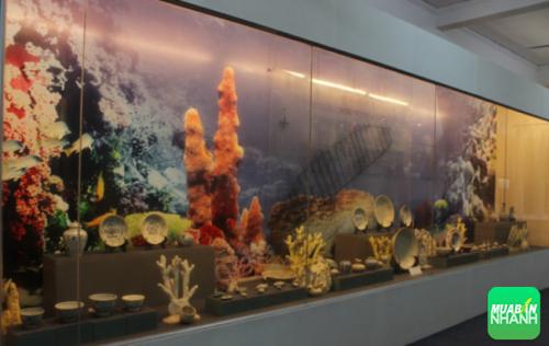 Thăm Bảo tàng biển Cù Lao Chàm đầy vẻ độc đáo, ấn tượng