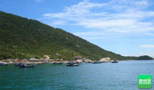 Bãi Xếp là nơi du khách thường dừng lại lặn ngắm san hô