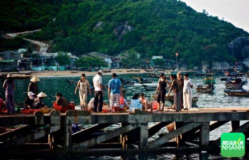 Khám phá Cù Lao Chàm (Quảng Nam) với những địa điểm du lịch đầy ấn tượng, 236, Nguyễn Liên, Địa Điểm Nhanh, 05/09/2016 09:50:23