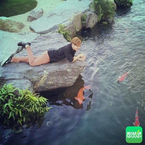 Công viên đá Nhật – Rin Rin Park là nơi chụp ảnh lý tưởng mà bạn không cần đến Nhật Bản