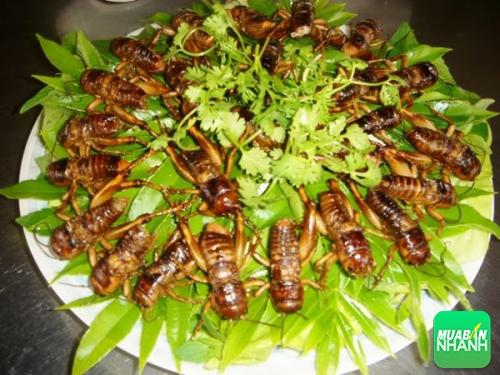 7 món dân dã làm nên đặc sản ẩm thực Đồng Nai, 244, Phương Mai, Địa Điểm Nhanh, 05/09/2016 11:59:12