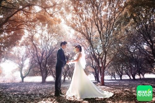 Hà Nội cổ kính với những địa điểm chụp ảnh cưới tuyệt đẹp, 247, Phương Mai, Địa Điểm Nhanh, 22/09/2016 12:58:40