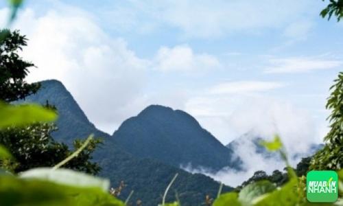 Vùng núi Tam Đảo - Vĩnh Phúc