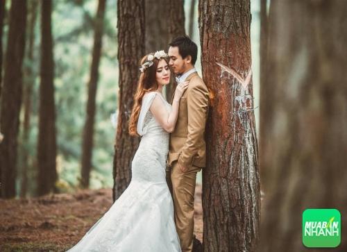 Những địa điểm chụp ảnh cưới đẹp nhất tại Quảng Nam, 300, Phương Mai, Địa Điểm Nhanh, 17/10/2016 16:47:54
