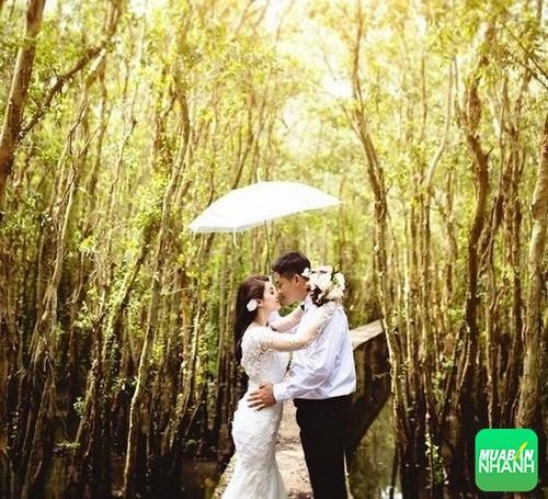 Làng nổi Tân Lập Long An địa điểm chụp ảnh cưới tuyệt đẹp, 331, Phương Mai, Địa Điểm Nhanh, 26/10/2016 09:34:01