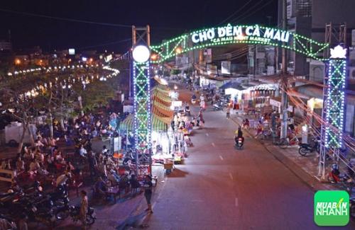 Chợ đêm Cà Mau - Địa điểm mua sắm hấp dẫn du khách, 344, Phương Mai, Địa Điểm Nhanh, 31/10/2016 15:39:27