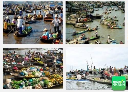 Chợ nổi Long Xuyên – Nơi mua bán không nói thách ở An Giang, 358, Phương Mai, Địa Điểm Nhanh, 01/11/2016 16:11:12