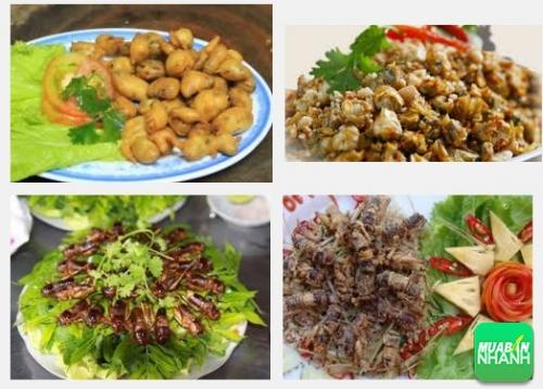 Thưởng thức ẩm thực Sài Gòn tại những quán ăn ngon quận 2, 376, Phương Mai, Địa Điểm Nhanh, 08/11/2016 16:52:26