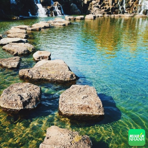 Công viên Suối Mơ - Suối Mơ Park ( Tân Phú - Đồng Nai) - địa điểm du lịch mới nổi không thể bỏ qua, 154, Phương Mai, Địa Điểm Nhanh, 29/08/2016 14:02:20